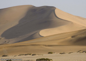Stretchihg 3000 km, the Namib Naukluft is one of the oldest deserts in the world.