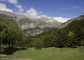 The vast cliffs and mountains around Hecho are one of the best places to find a range of the tyoical Pyrenean species.